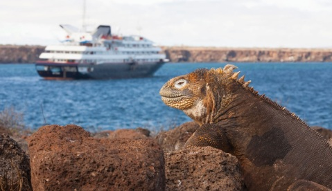 Crucero-de-Expedición-by-Levando-Anclas-